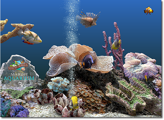 A new high resolution background gives your fish a place to play.