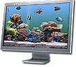 Marine Aquarium 2.6 for Mac OS X