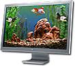 Goldfish Aquarium 2.0 - OS X Upgrade