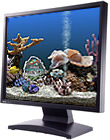 Marine Aquarium 3.2 for Windows Thumbnail